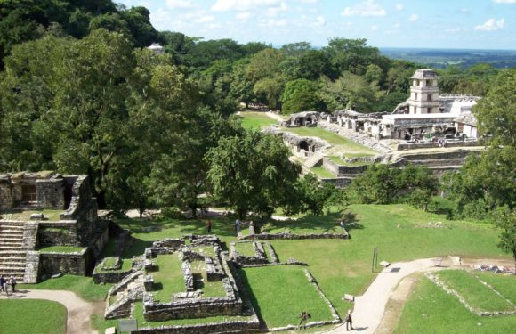 Area archeologica di Palenque, Chiapas, Messico.